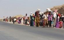 کشف گور دسته جمعی ایزدیها در شمال عراق