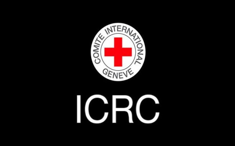 فرانسیسکو روکا، معاون صلیب سرخ : جنایات عربستان علیه مردم یمن فاجعه بار و برای جامعه جهانی شرم آور است