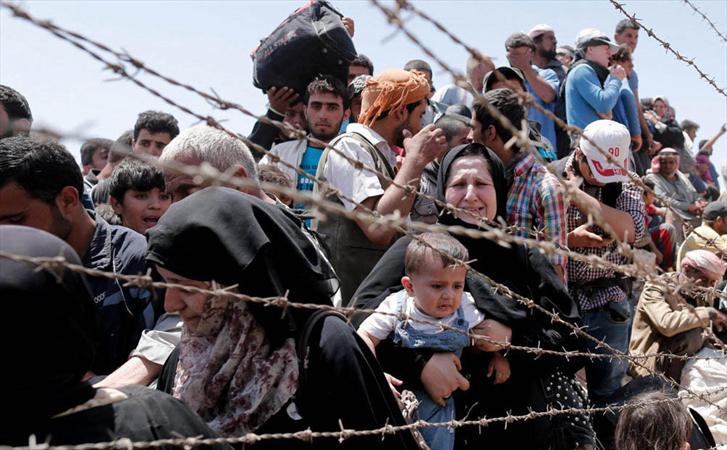سازمان ملل: نزدیک به ۸۰ میلیون نفر در جهان آواره شده اند