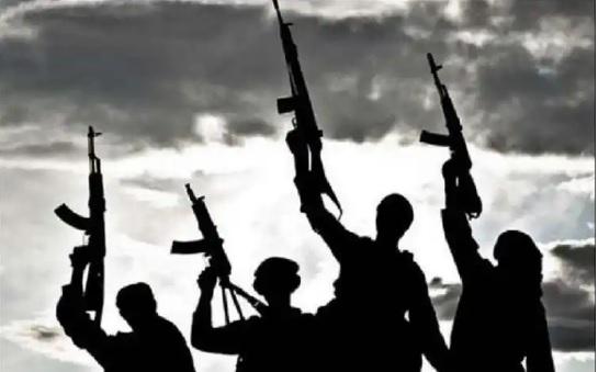 کسانی که مردم را می کشند تروریست هستند نه راهزن و یا دزد